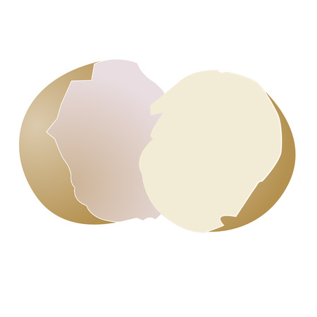 Broken egg on white background, vector illustration Stock Vector - 4671494