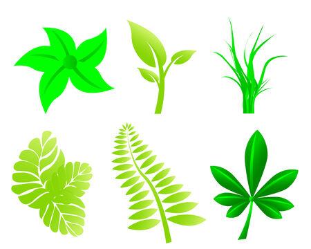 Leaves set Stock Vector - 4671490