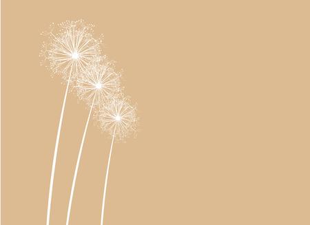 flimsy: Dandelions