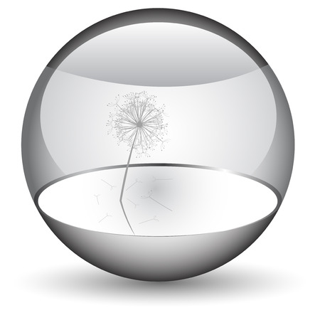 Dandelion in the orb Stock Vector - 4939258