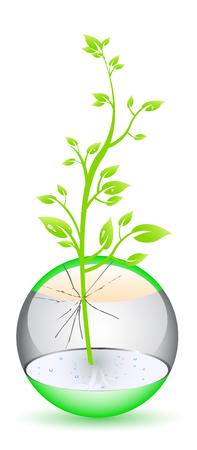 Brillante orbe con planta interior Ilustración de vector