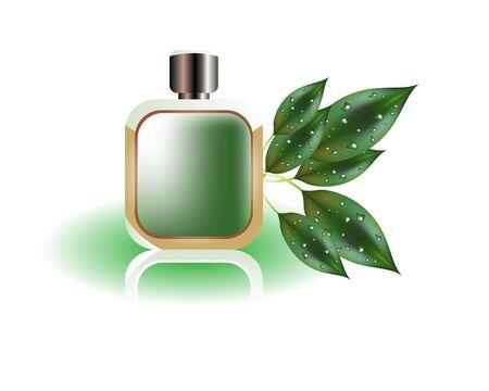 tufo: Botellas de perfume  Vectores