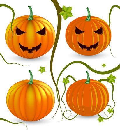 halloween pumpkins. One gradient mesh version and one simple version. Stock Vector - 8001636