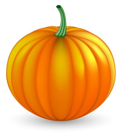 pumpkin  Stock Vector - 8077312