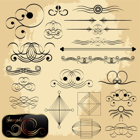 Calligraphic elements collection with sample Vector