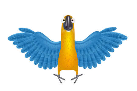macaw: Cute macaw or parrot cartoon Illustration