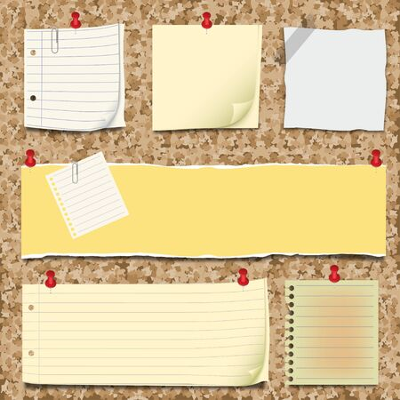 Back to school - notepaper collection and cork board Stock Vector - 10136318