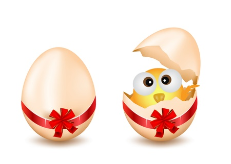 Easter Egg With Checken Stock Vector - 12908195