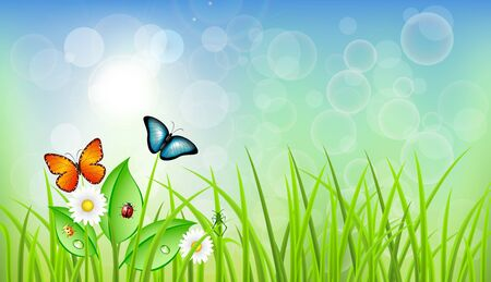 Spring Vector Background with Grass Vector