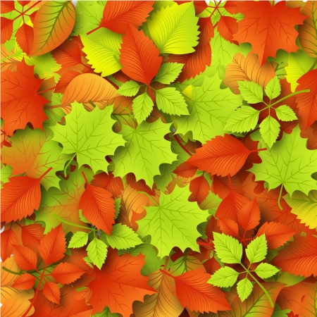 Autumn Background with Leaves Stock Vector - 15369727