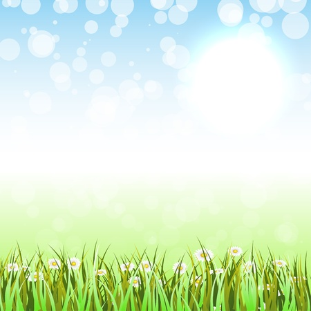 sedge: Spring Background Illustration