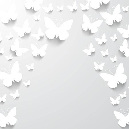 Documento de antecedentes de la mariposa