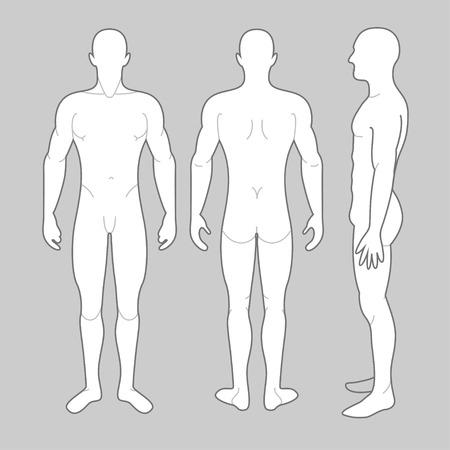 nudo maschile: Anteriore Mans corpo posteriore e vista laterale