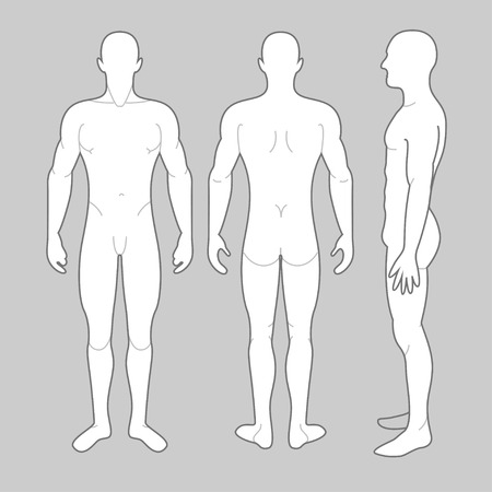 Mans Body front back and side views Illustration
