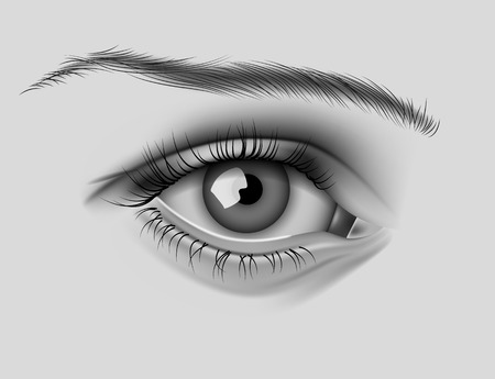 black eyes: Realistic Vector Eye Illustration