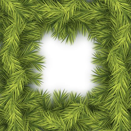 winter vector: Christmas Fir Background