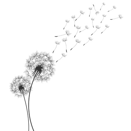 Dandelions  in Wind Illustration