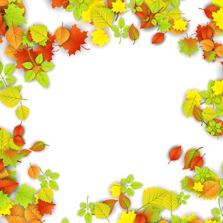 orange trees: Autumn Leaves