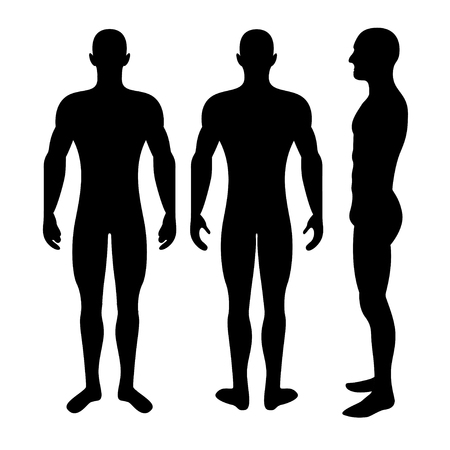 angles: Male body silhouette from three angles Illustration