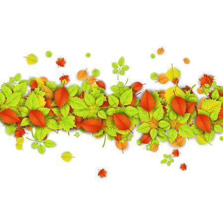 naranjo arbol: Hojas de otoño Vectores