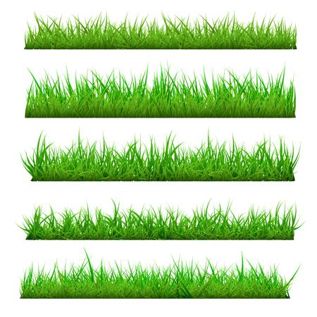 Ensemble d'herbe de printemps de vecteur Vecteurs