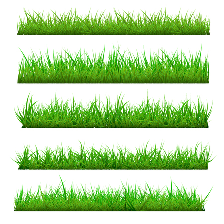 Set of Vector Spring Grass Vettoriali