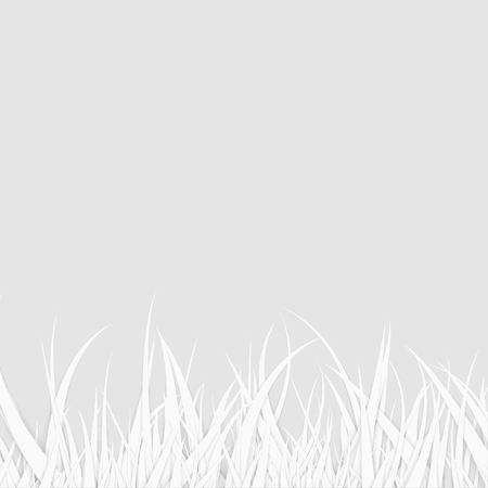 Abstract White Grass