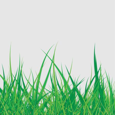 Spring Green Grass Stock Illustratie