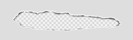 Gray Vector Ripped or Torn Paper Divider Background