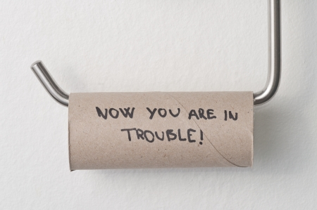Empty toilet paper roll hanging in a restroom