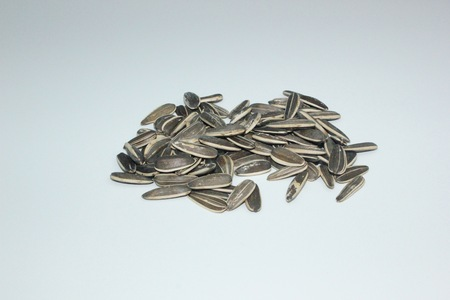 semillas de girasol: Las semillas de girasol