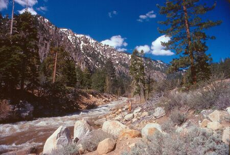 Stream in Yosemite Banco de Imagens