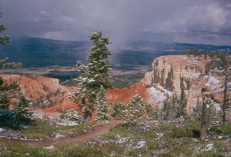 Bryce Canyon in Springtime
