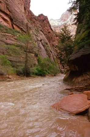 zion: Zion Canyon