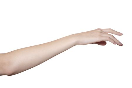 beautiful female hand and arm isolated on white Stock Photo - 5265792