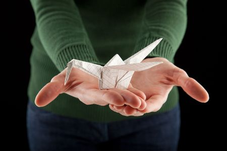 female hands holding an origami crane, focus on the bird photo