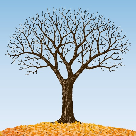 Bare tree Stock Vector - 10526522