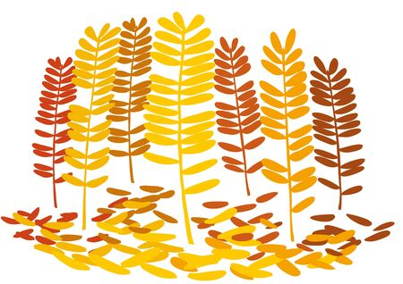 Autumn Stock Vector - 10545704