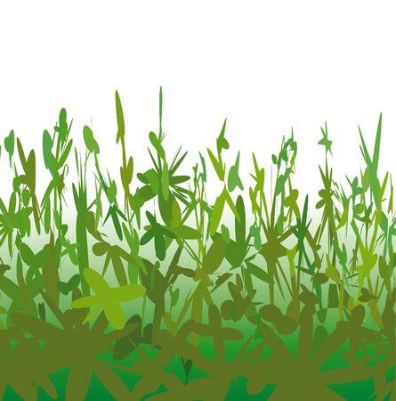 jungle plants: Background