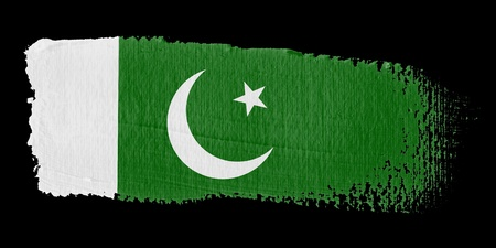 pakistan flag: Brushstroke Flag Pakistan