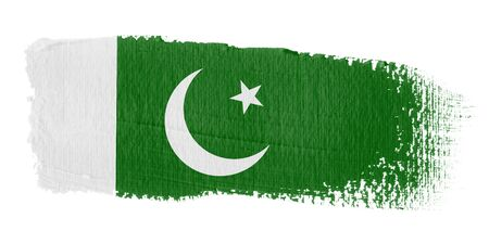 pakistani: Brushstroke Flag Pakistan