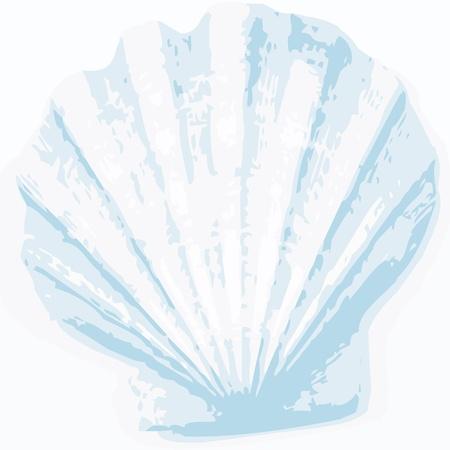 cozza: shell di fondo