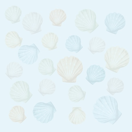shells background Stock Vector - 10590434