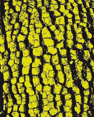 tree bark: Bark background