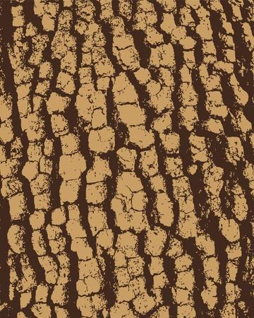 Bark Hintergrund