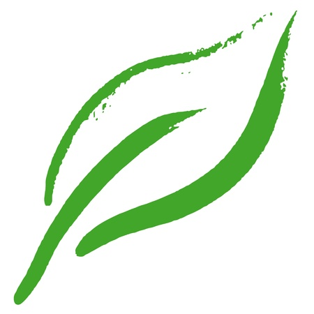 grass isolated: Stylized leaf