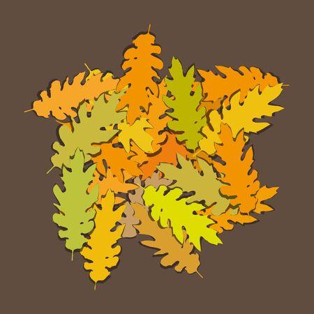 foglie di quercia: foglie di quercia