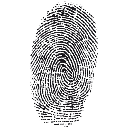 fingerprint Stock Vector - 10665148