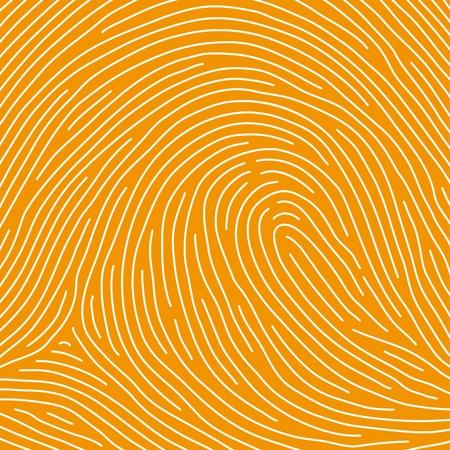 fingertip: fingerprint