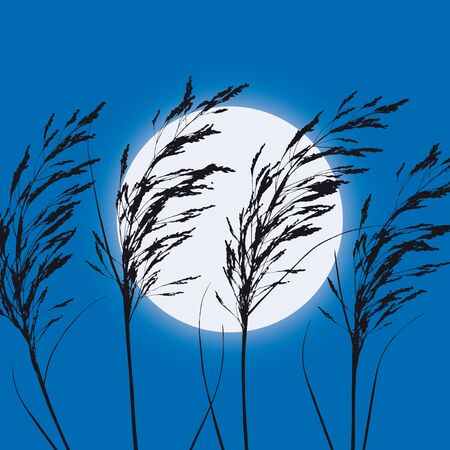 plants and moon Stock Vector - 10664810